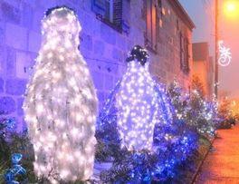 Rue de Noël < Vervins < Thiérache < Aisne < Hauts de France - Photo