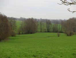 Ninelles < Secret < Thenailles < Thiérache < Aisne < Hauts-de-France - Photo