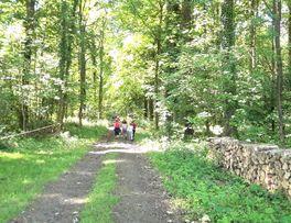 Randonnée < Thiérache < Aisne < Hauts de France -