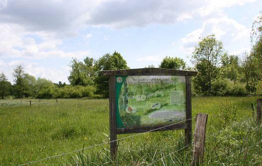 Prairie sous le bochet < Grandrieux <Aisne < Picardie -