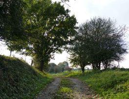 Secret < Un chemin creux < Thiérache < Aisne < Hauts-De-France - Photo