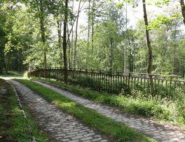 Forêt du Nouvion < Secret < Le Nouvion < Thiérache - Photo