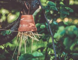 insect-hotel-4244423_1920 -