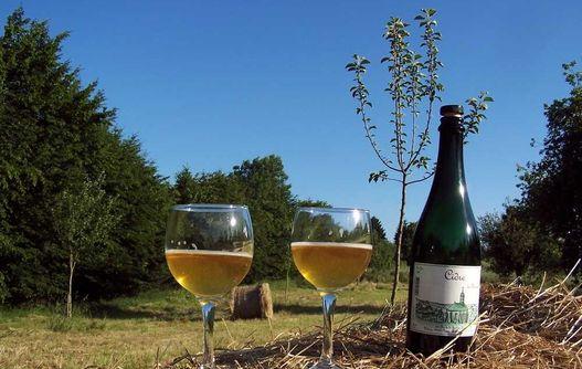 Clos de la Fontaine Hugo < Rozoy-sur-serre < Aisne < Picardie -
